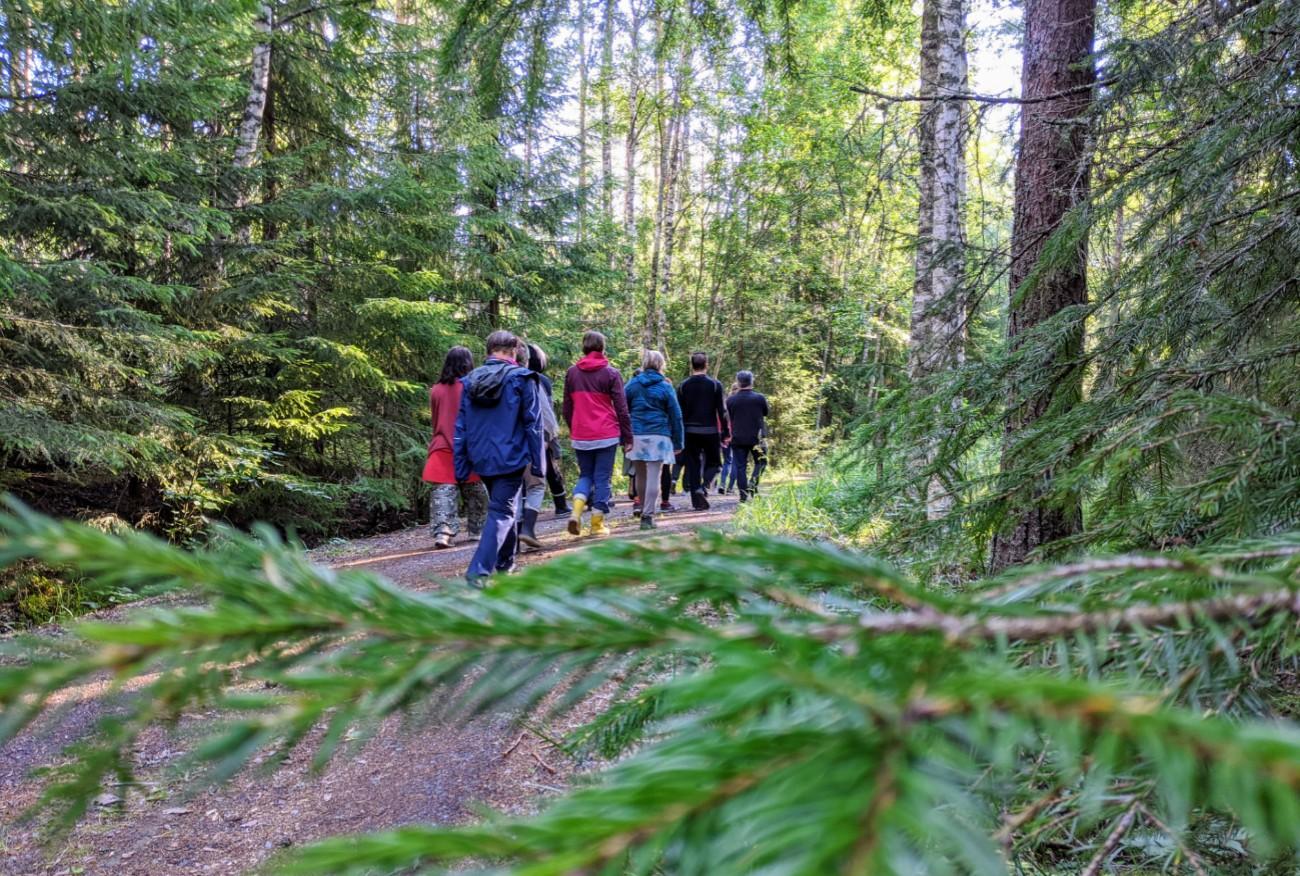 People Walking In Forest Finland - Honesty Europe Retreats