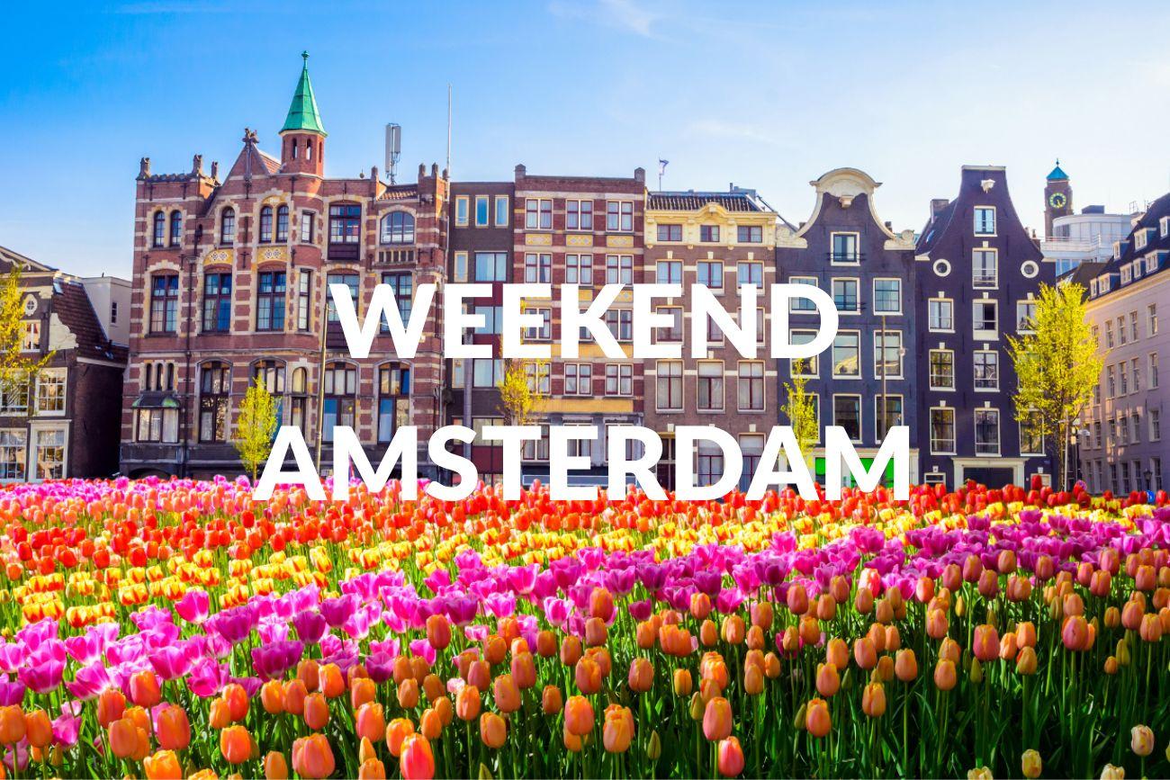 Radical Honesty Weekend Workshop Amsterdam |10-12 September 2021